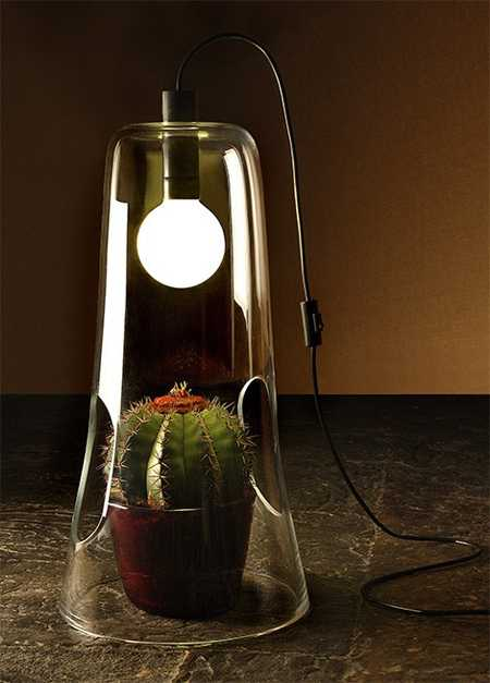 mini green house lamp